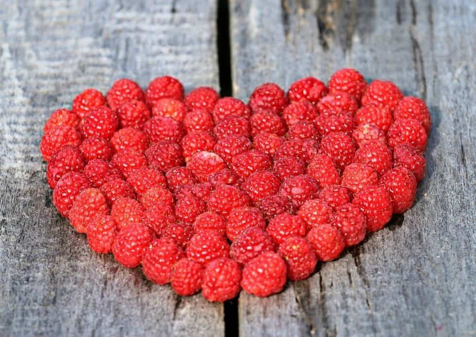 raspberries for histamine intoleance